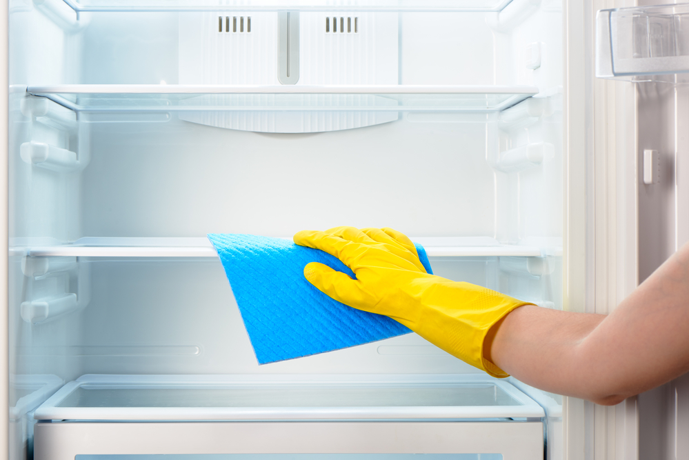 Fridge Cleaning Services, Fridge Cleaning