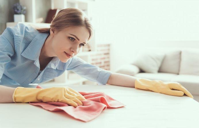 portland cleaning company maid